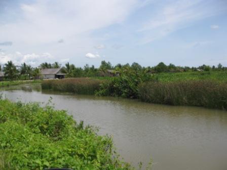 Perkampungan di Kampung Laut (doc. pribadi)