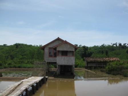 Rumah warga Kampung Laut